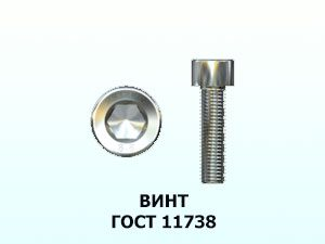 Винт 16x100 ГОСТ 11738-84